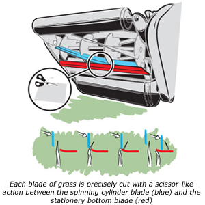 Allett_Cylinder_Mowers_diagram.jpg